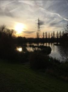 Wetlands centre